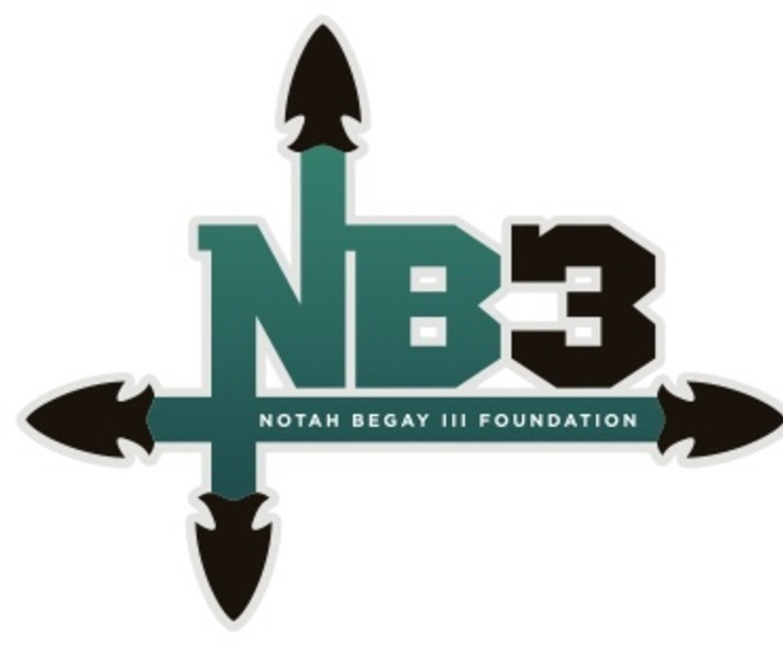 2013 nb3f logo jpeg nb3f
